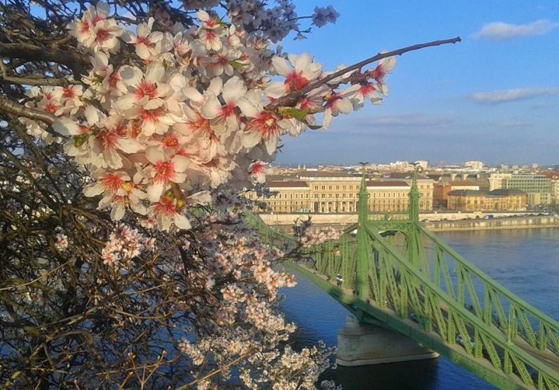 Forum sur l'amiti� entre les peuples d'Europe Centrale et d'Europe Orientale