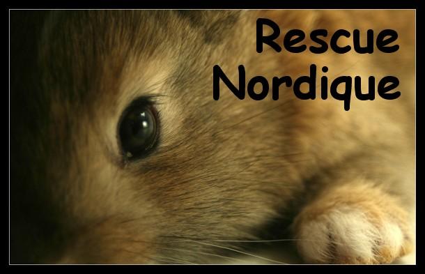 Rescue Nordique ...