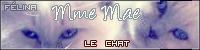Le chat Mme Maé