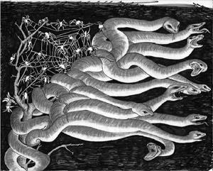 snakes10.jpg