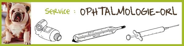 Service : OPHTALMOLOGIE-ORL