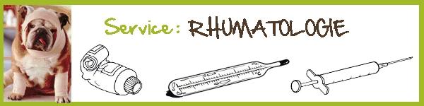 Service : RHUMATOLOGIE
