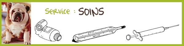 Service : SOINS