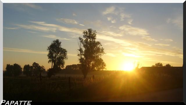 l'aube! dans nature 40511