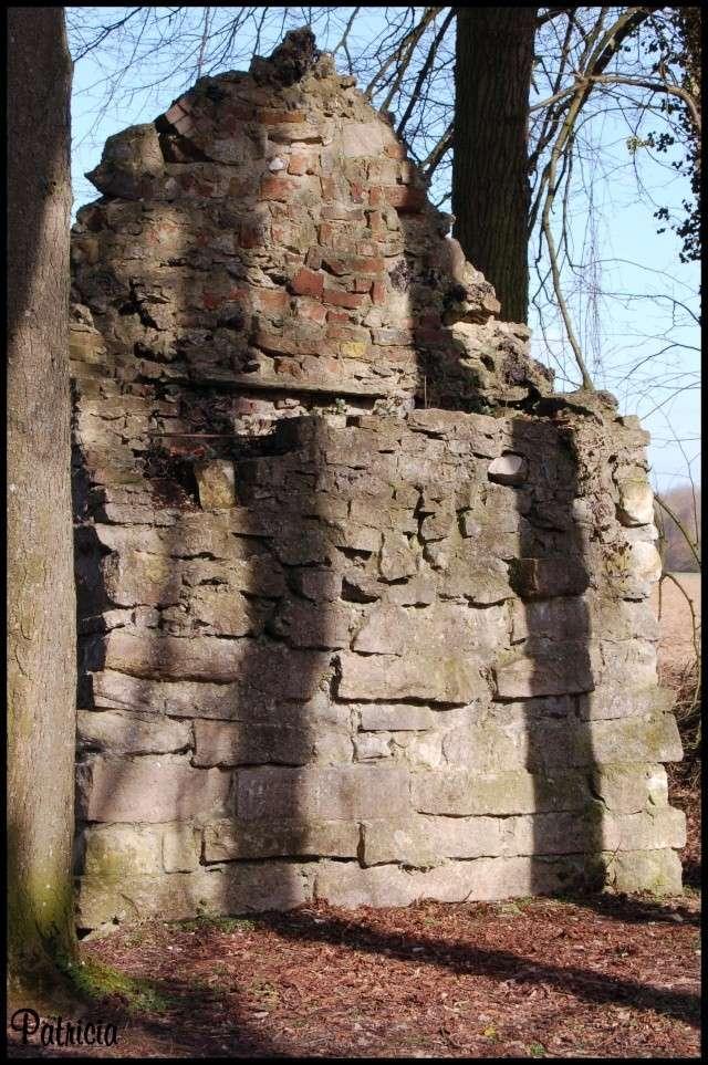 mur11 dans nature
