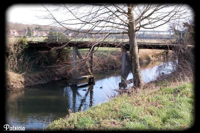 pont110
