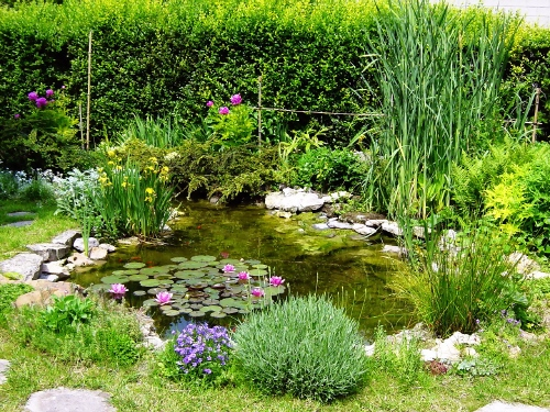 Beautiful Rocaille Et Bassin De Jardin Pictures - Amazing House ...