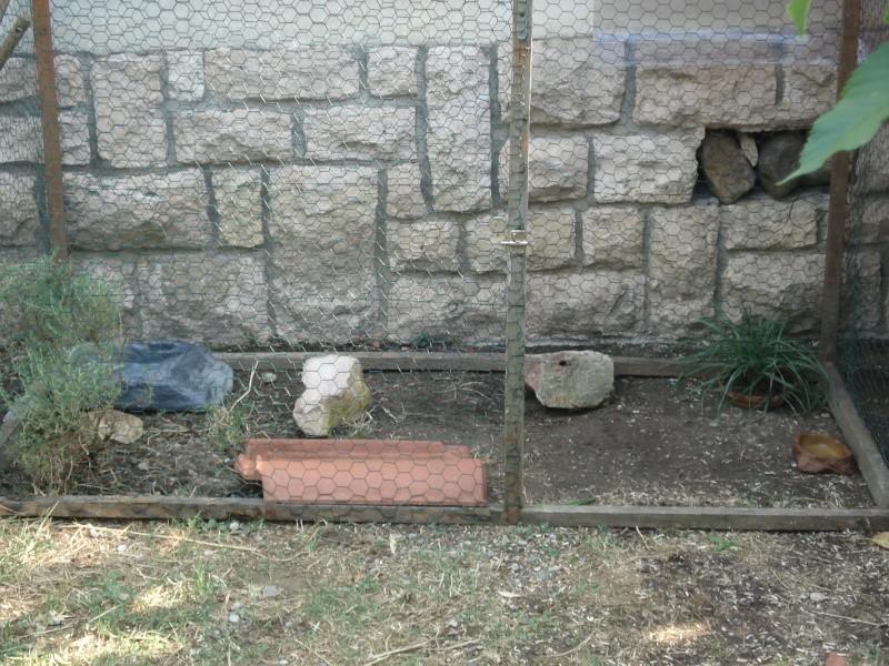 aide pour construction taille id ale du parc pour 1 tortue page 2