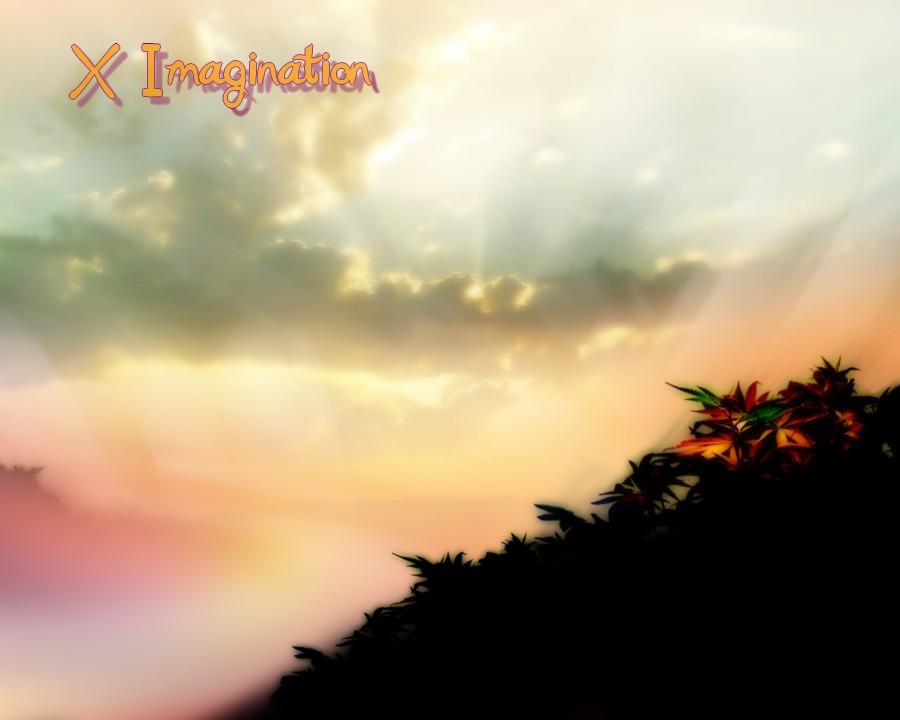 X-Imagination