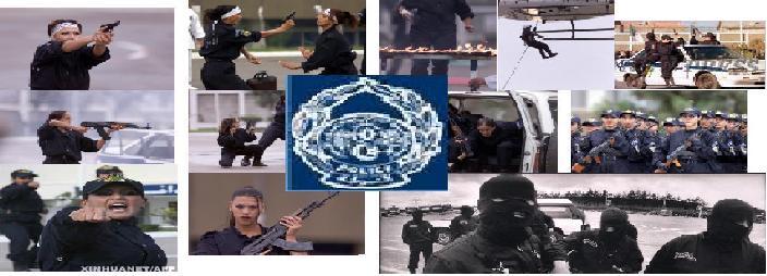 Un forum pour tous les policiers d Algérie