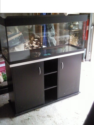 Aquarium 120 x 40 for Meuble aquarium ikea