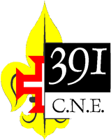 Agrupamento 391 - Antas