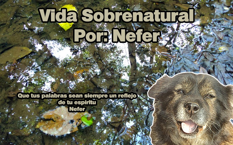 sobrenatural