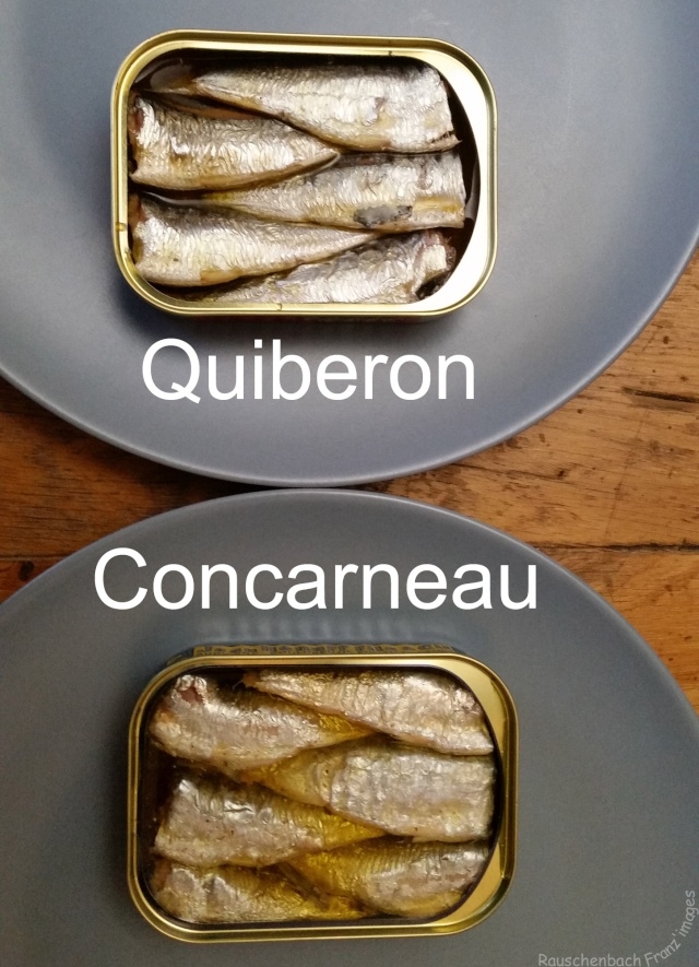 Puxisardinophiles collectionneurs de bo tes de sardines page 2 - Collectionneur de boite ...