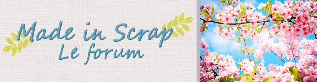 Modo & admin Forum Made in Scrap
