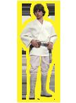 Je suis un Jedi, comme mon père l'avait été avant moi.