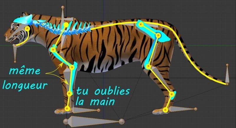 tigre_12.jpg