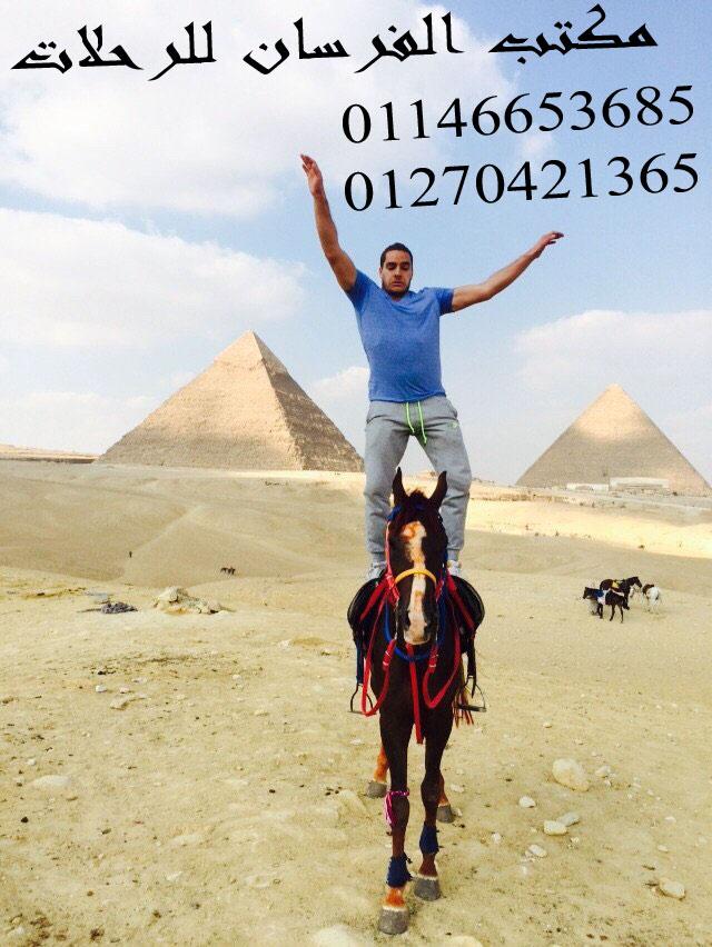 الموقع الاول في الهرم لركوب الخيل والبيتش باجي في نزلة السمان