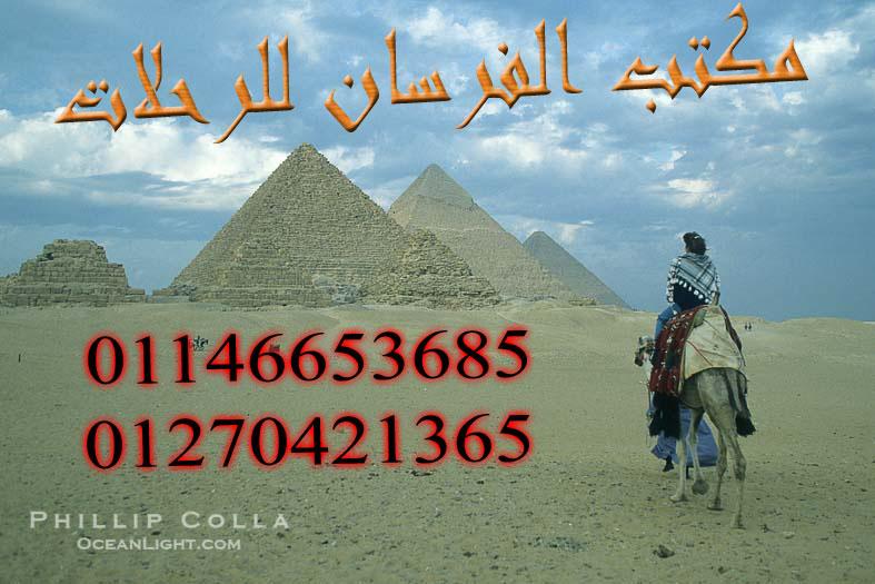 رحلات ركوب خيل وبيتش باجي في صحري ستي وبساطة في الهرم