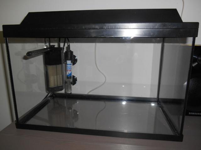 d marrage d 39 un 20l pour crevettes de a z. Black Bedroom Furniture Sets. Home Design Ideas
