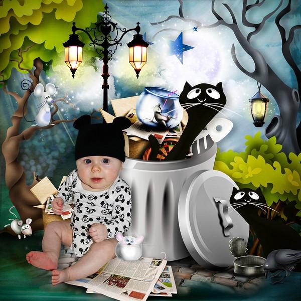 kitty_11.jpg