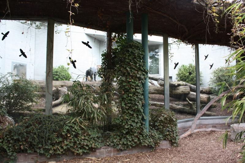Leszoosdanslemonde afficher le sujet zoo de zurich for Maison du monde zurich