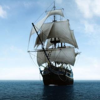 pirate13.jpg