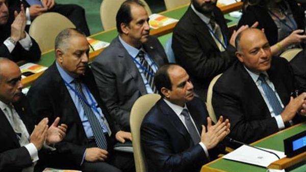 صور مجلس الامن