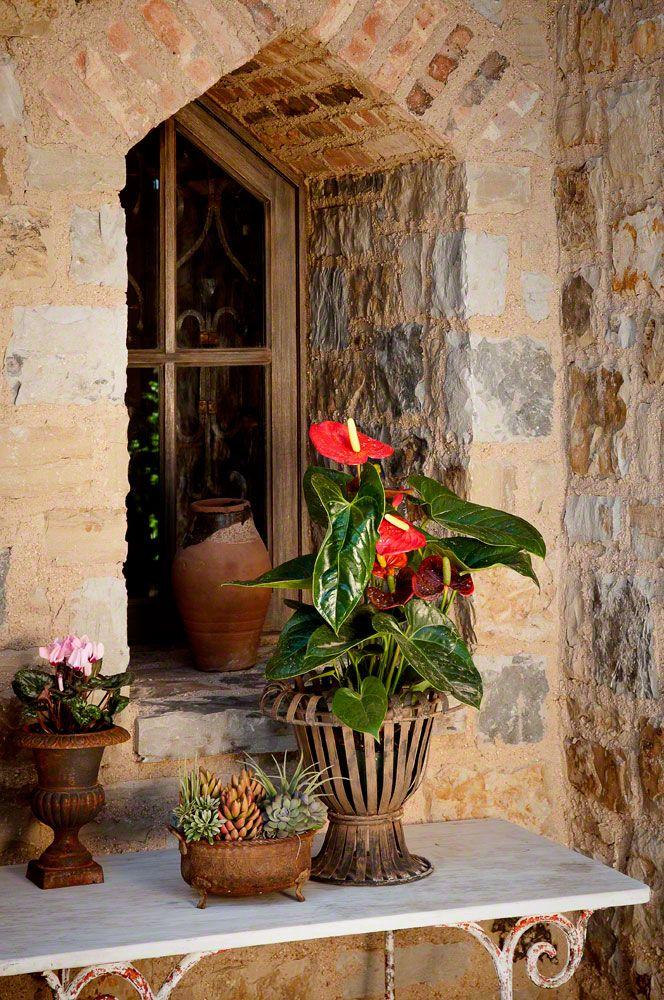 balcons et terrasses fleuries page 27. Black Bedroom Furniture Sets. Home Design Ideas
