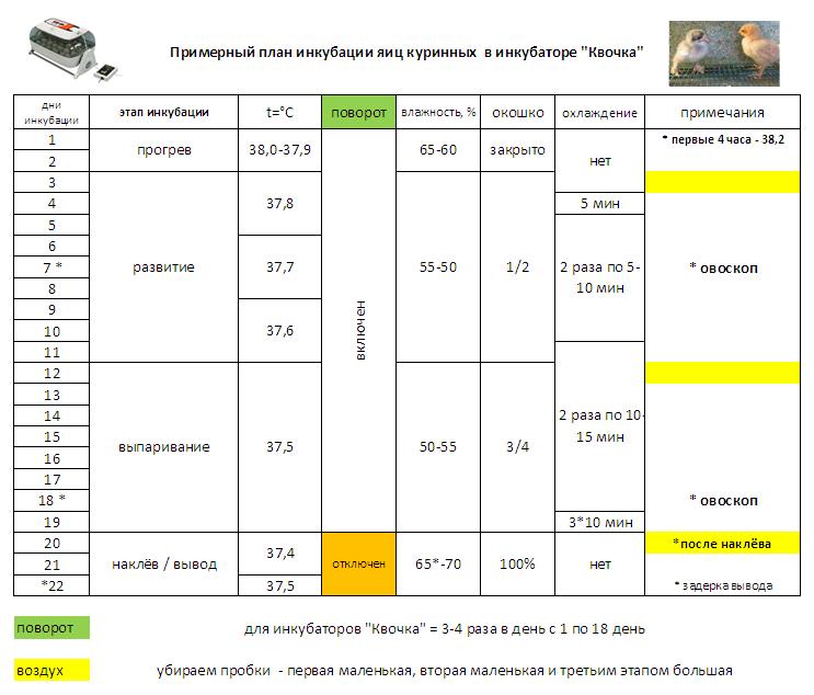 каркас таблица инкубации мускусной утки это