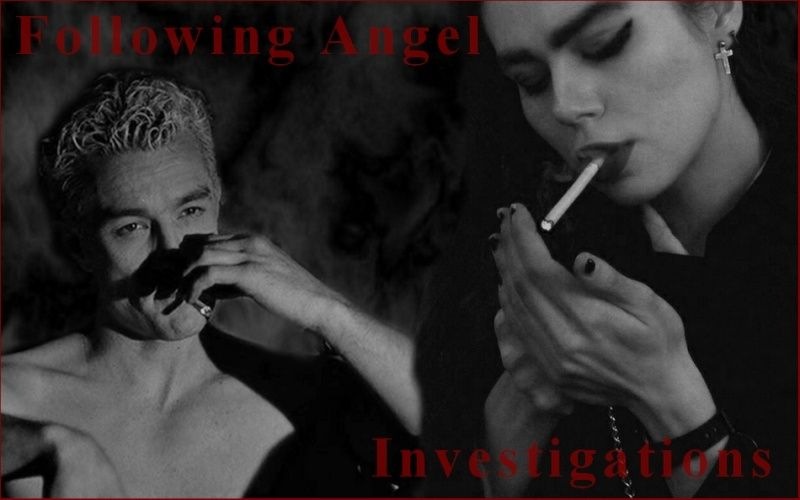 Following Angel Investigations