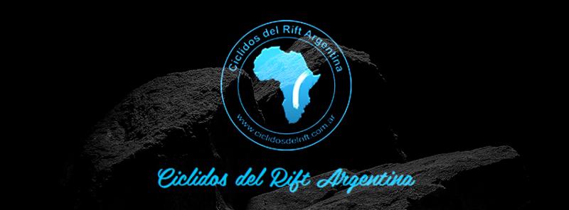 Cíclidos del Rift Argentina