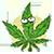 Funny hemp