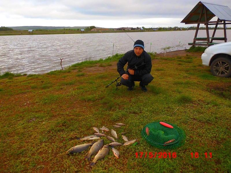 платные водоемы для рыбалки в псковской области