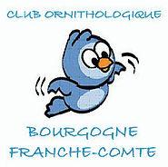 Club ornithologique Bourgogne Franche-Comté