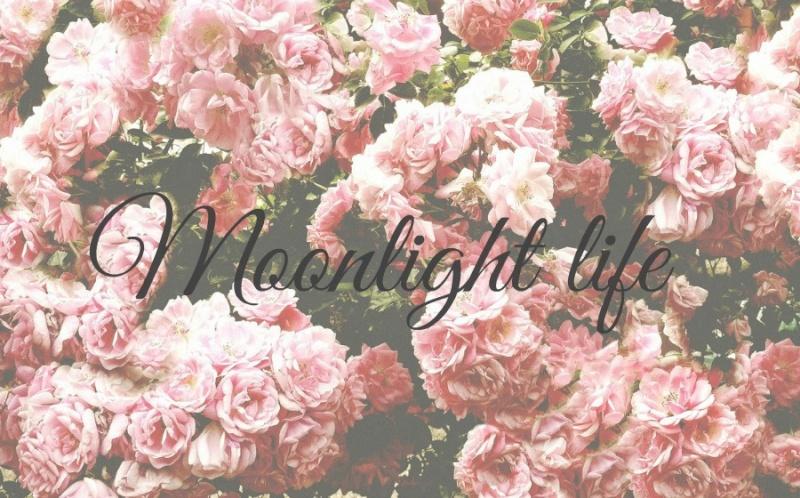 Twilight life