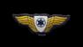 מפקד טייסת