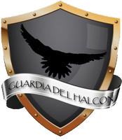 Guardia del Halcon