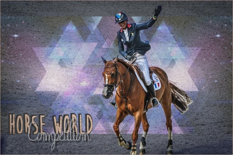 Horse World Competition