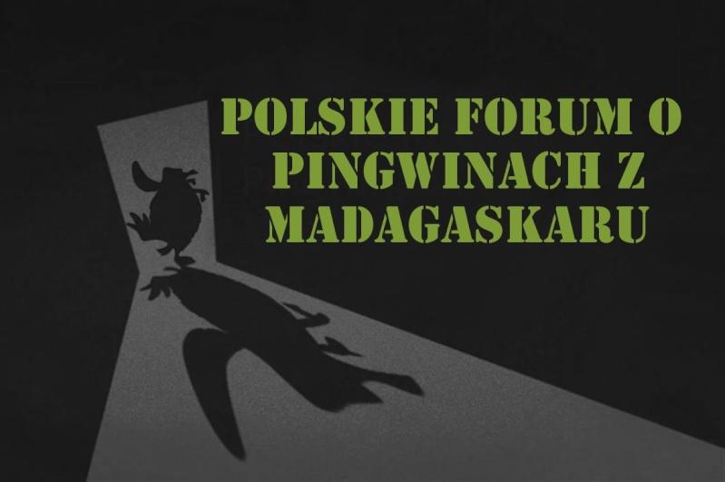 Pingwiny z Madagaskaru Polska