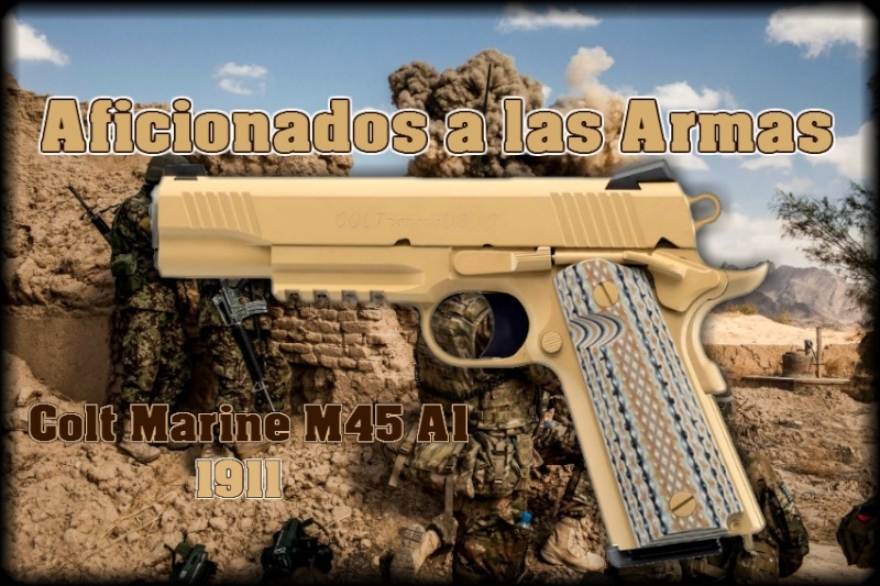 Aficionados a las Armas(mercadito)