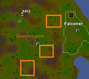Fastest Fairy Ring To Get To Osrs