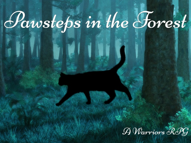 Pawsteps in the Forest
