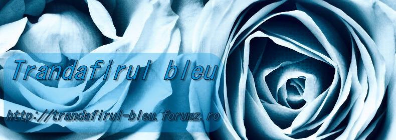 Cafeneaua Trandafirul-bleu