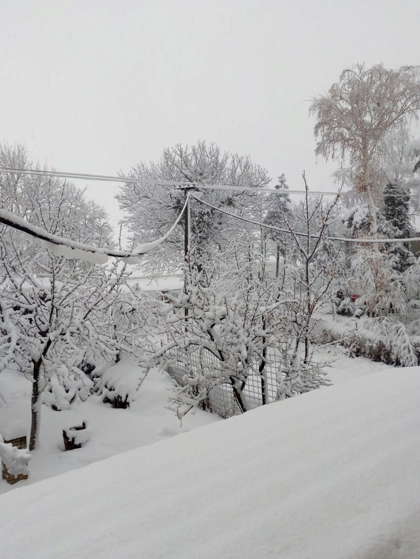 zima_210.jpg